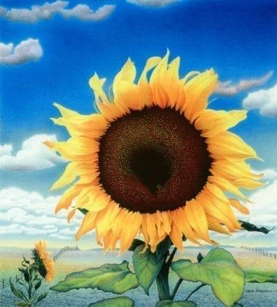 Lloyd Fitzgerald-Sunflower in Blue