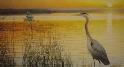 Lloyd Fitzgerald-Blue Herons Grand Lake